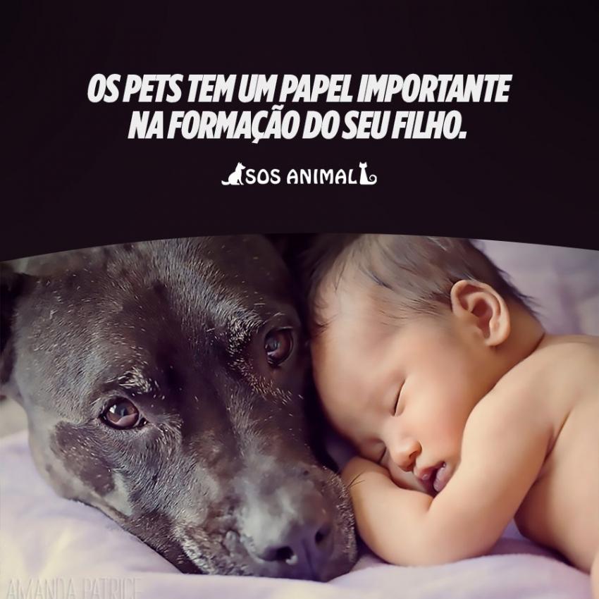Os Pets tem um papel importante na formação do seu filho.