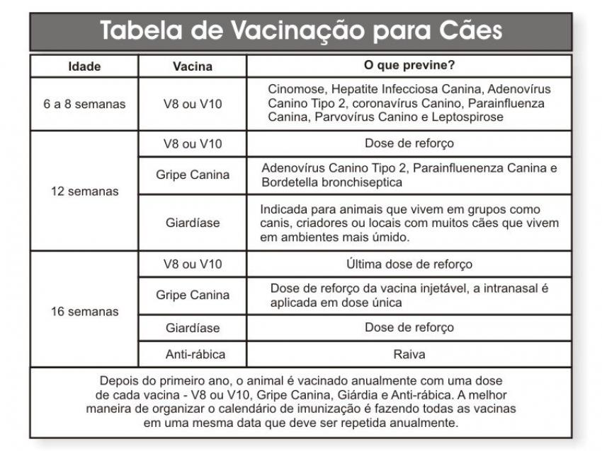 Guia de Vacinação Canina